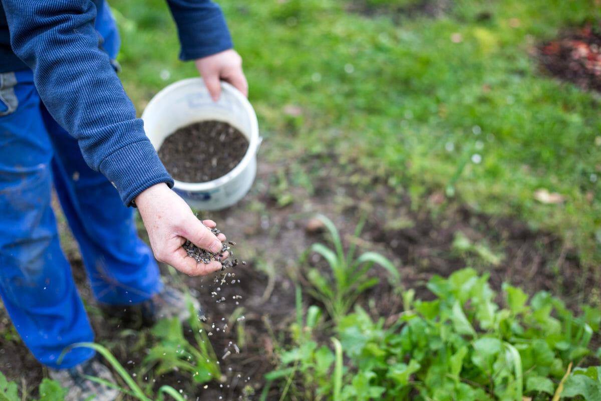 organic planting soil